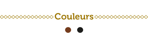 Culotte compétition Les Motocyclettistes - Couleurs